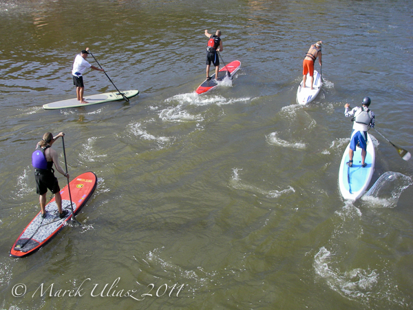Colorado River Race - SUP start